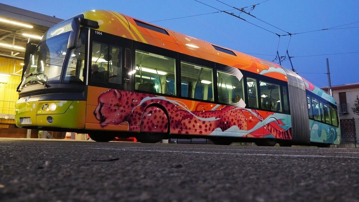 BUS TCL